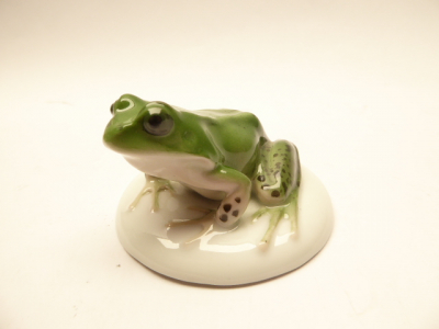 Rosenthal porcelain. Colored frog around 1928